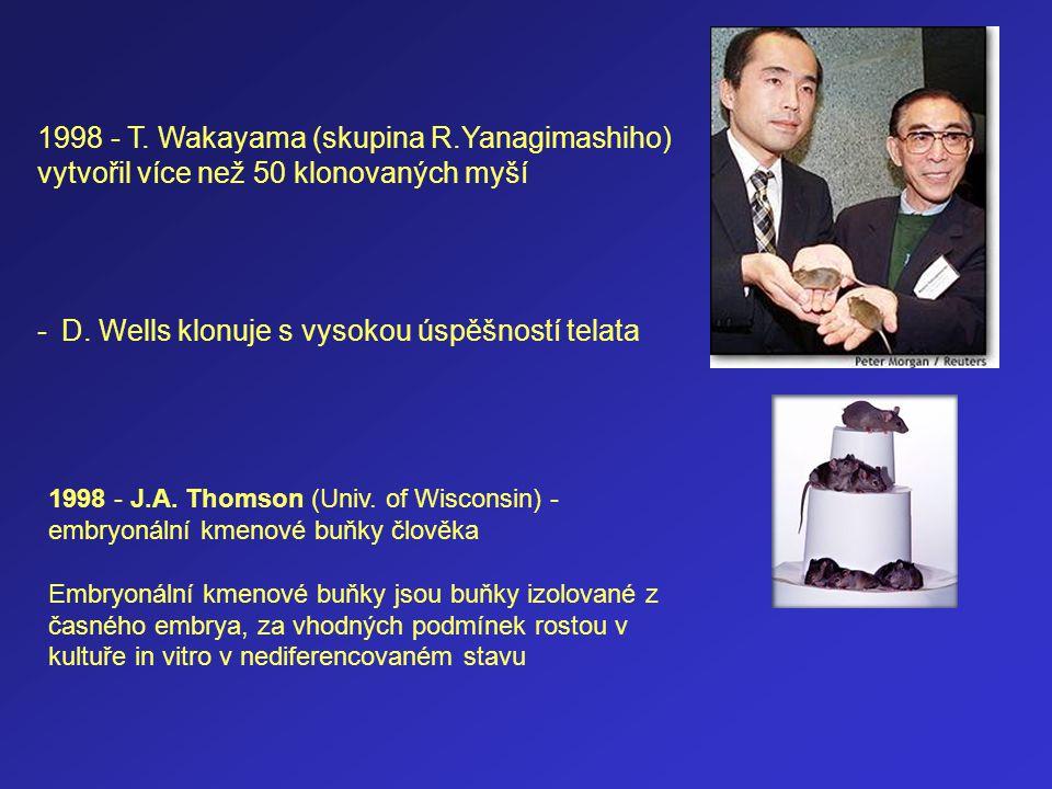 1998 - T. Wakayama (skupina R.Yanagimashiho) vytvořil více než 50 klonovaných myší - D. Wells klonuje s vysokou úspěšností telata 1998 - J.A. Thomson