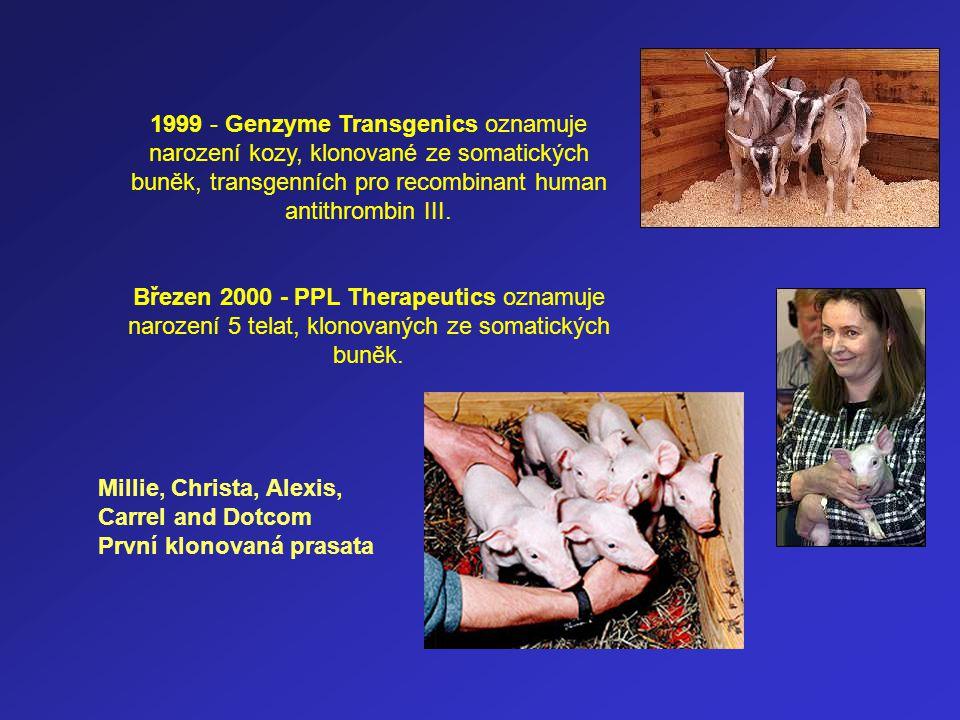 1999 - Genzyme Transgenics oznamuje narození kozy, klonované ze somatických buněk, transgenních pro recombinant human antithrombin III. Březen 2000 -