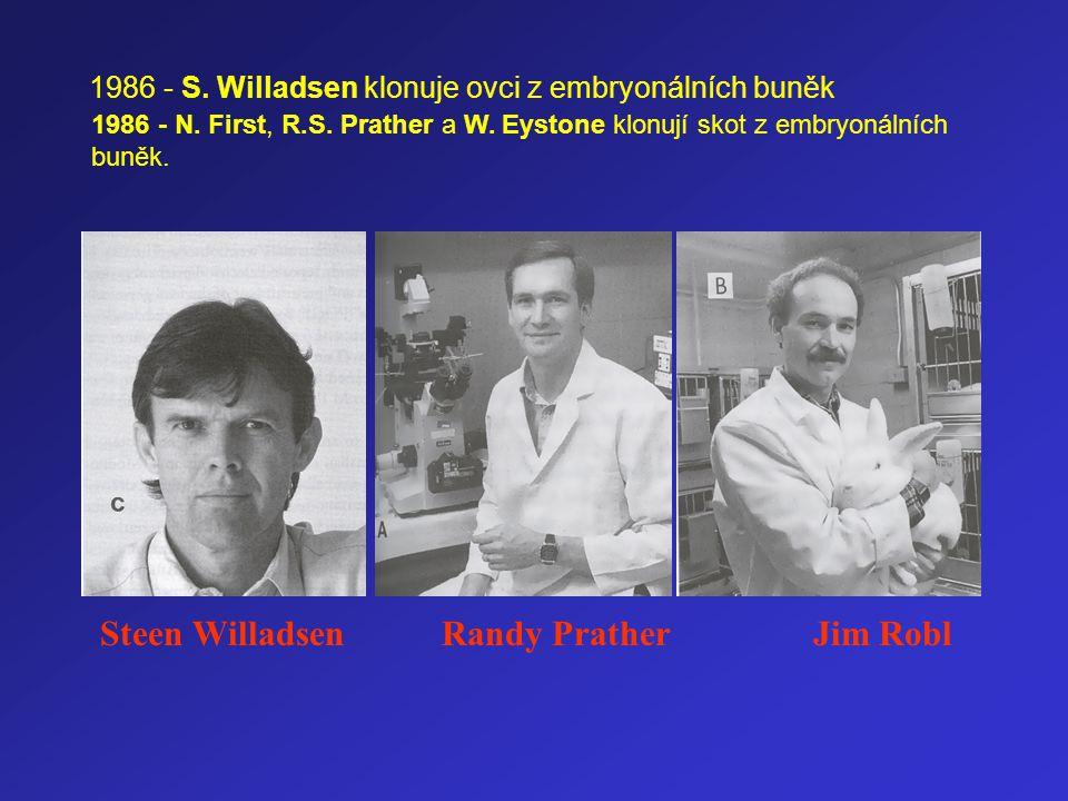 Steen Willadsen Randy Prather Jim Robl 1986 - S. Willadsen klonuje ovci z embryonálních buněk 1986 - N. First, R.S. Prather a W. Eystone klonují skot