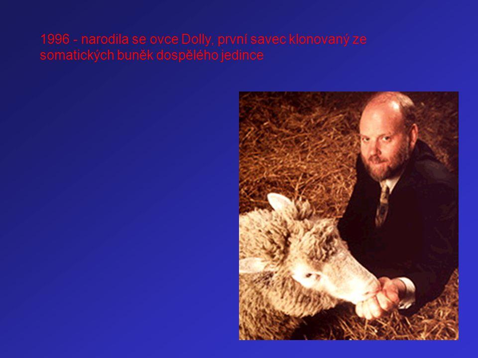 1996 - narodila se ovce Dolly, první savec klonovaný ze somatických buněk dospělého jedince