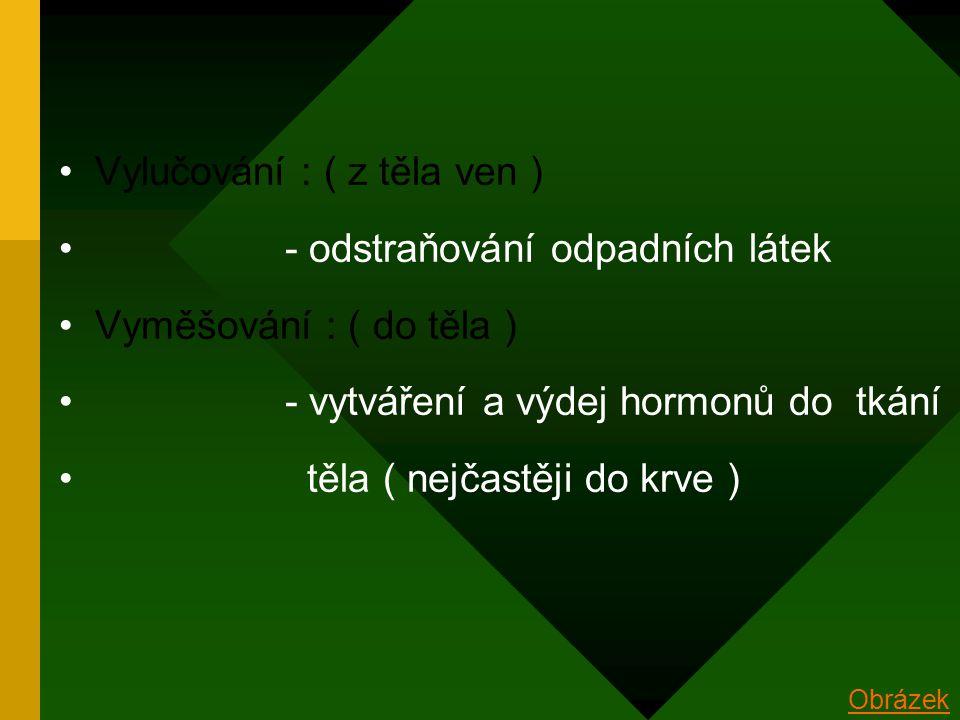 Vylučování : ( z těla ven ) - odstraňování odpadních látek Vyměšování : ( do těla ) - vytváření a výdej hormonů do tkání těla ( nejčastěji do krve ) Obrázek