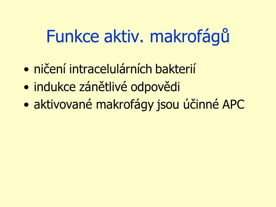 Funkce aktiv. makrofágů ničení intracelulárních bakterií indukce zánětlivé odpovědi aktivované makrofágy jsou účinné APC