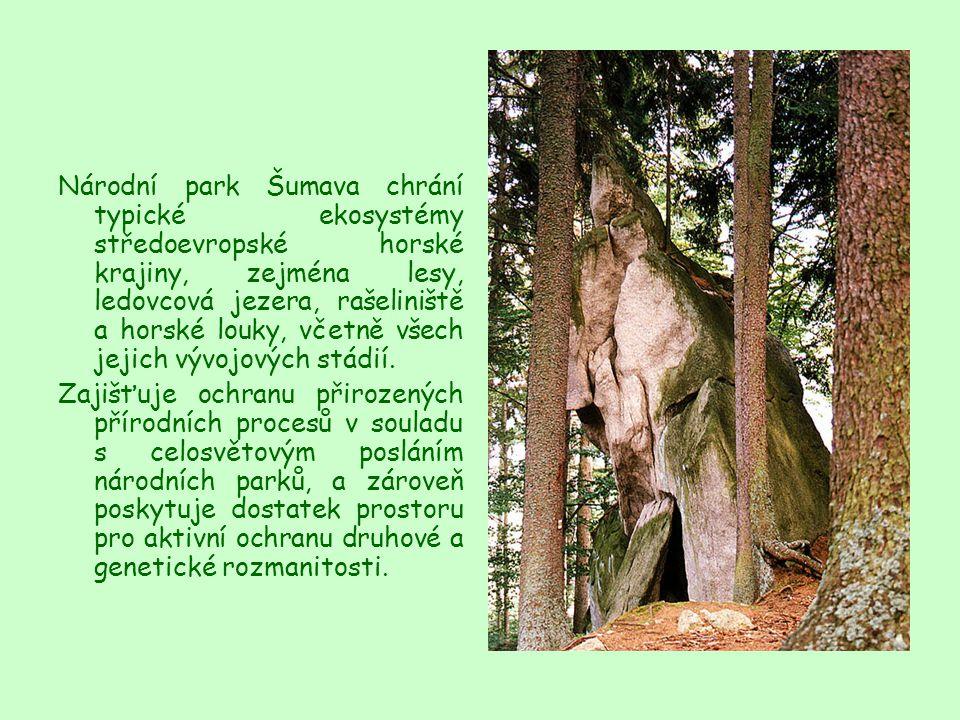 Národní park Šumava chrání typické ekosystémy středoevropské horské krajiny, zejména lesy, ledovcová jezera, rašeliniště a horské louky, včetně všech
