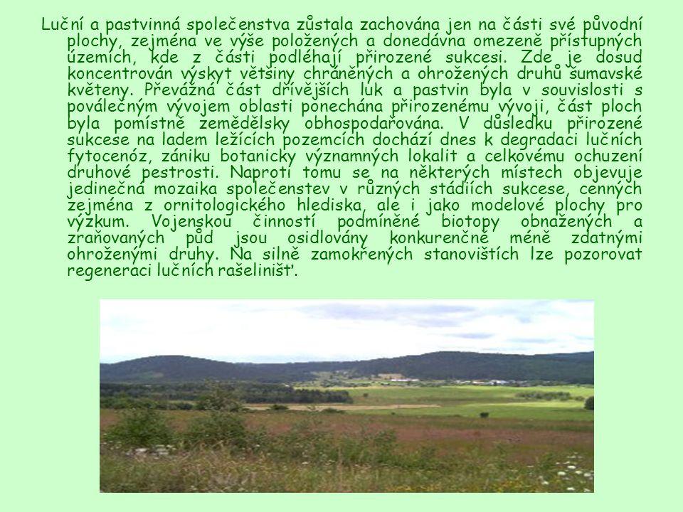 Luční a pastvinná společenstva zůstala zachována jen na části své původní plochy, zejména ve výše položených a donedávna omezeně přístupných územích, kde z části podléhají přirozené sukcesi.