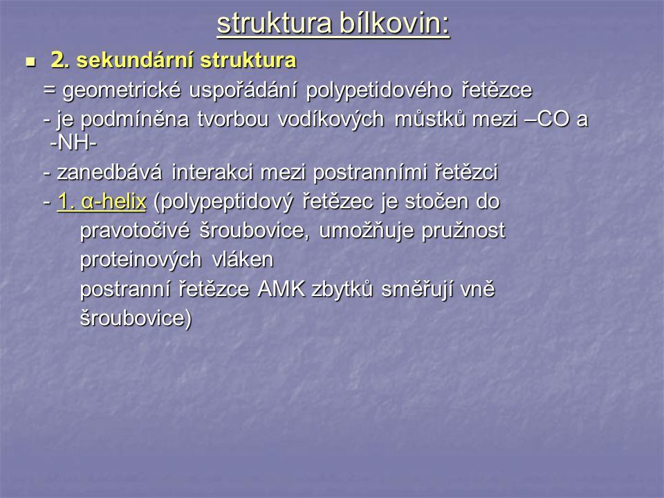 struktura bílkovin: 2. sekundární struktura 2. sekundární struktura = geometrické uspořádání polypetidového řetězce = geometrické uspořádání polypetid
