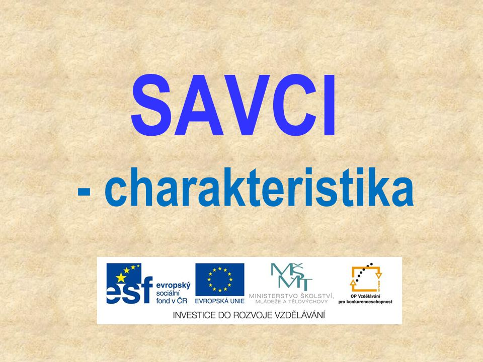 SAVCI - charakteristika