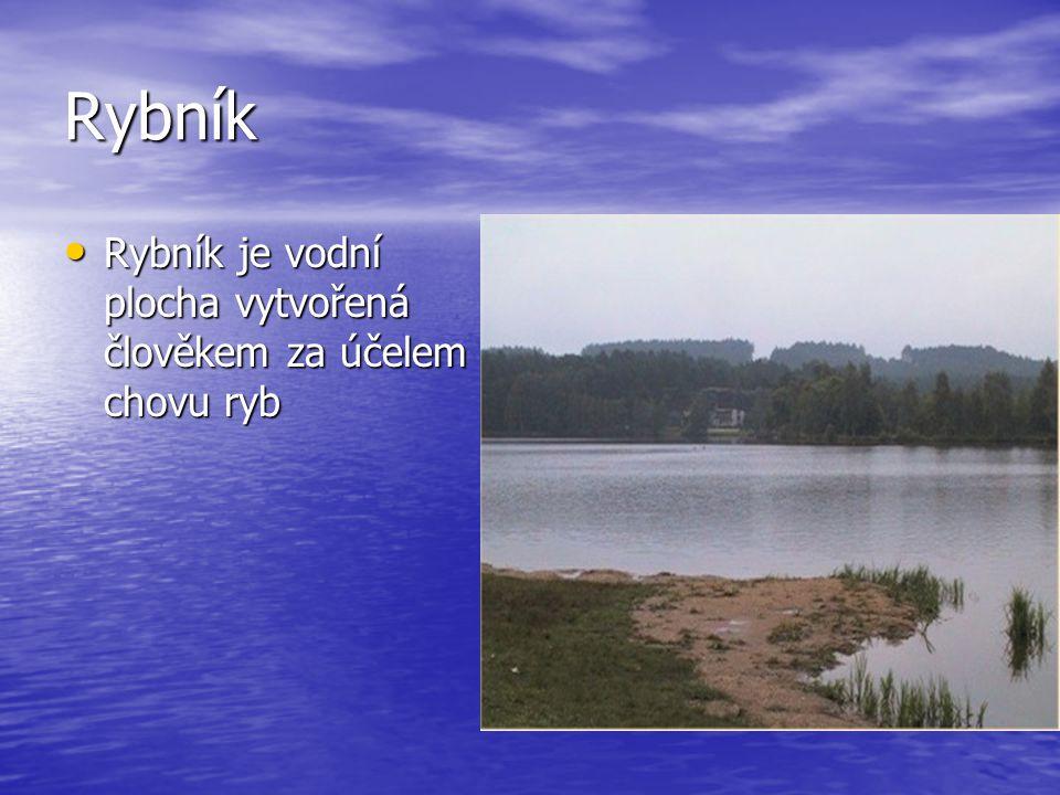 Rybník Rybník je vodní plocha vytvořená člověkem za účelem chovu ryb Rybník je vodní plocha vytvořená člověkem za účelem chovu ryb