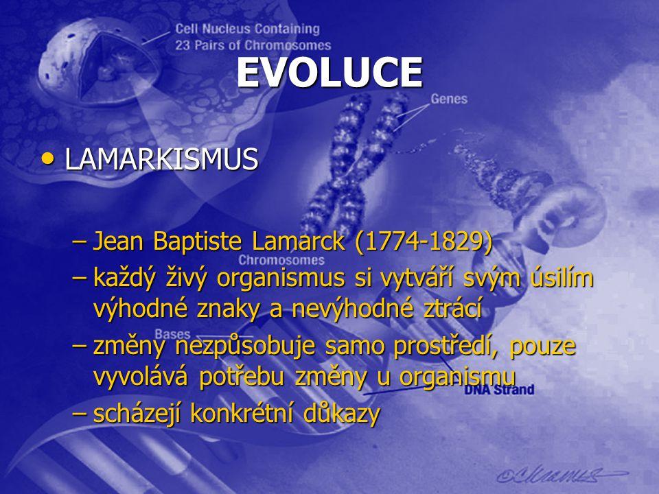 EVOLUCE LAMARKISMUS LAMARKISMUS –Jean Baptiste Lamarck (1774-1829) –každý živý organismus si vytváří svým úsilím výhodné znaky a nevýhodné ztrácí –změny nezpůsobuje samo prostředí, pouze vyvolává potřebu změny u organismu –scházejí konkrétní důkazy