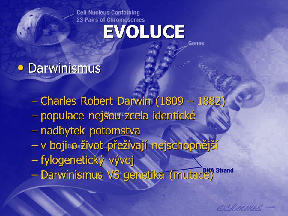 EVOLUCE Darwinismus Darwinismus –Charles Robert Darwin (1809 – 1882) –populace nejsou zcela identické –nadbytek potomstva –v boji o život přežívají nejschopnější –fylogenetický vývoj –Darwinismus VS genetika (mutace)