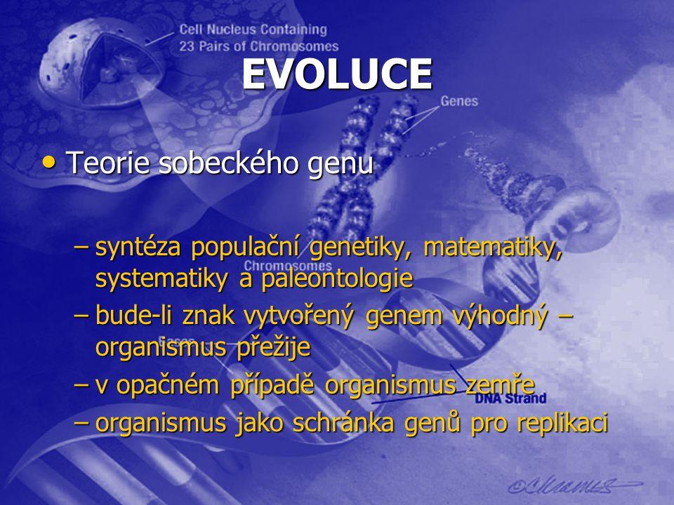 EVOLUCE Teorie sobeckého genu Teorie sobeckého genu –syntéza populační genetiky, matematiky, systematiky a paleontologie –bude-li znak vytvořený genem výhodný – organismus přežije –v opačném případě organismus zemře –organismus jako schránka genů pro replikaci