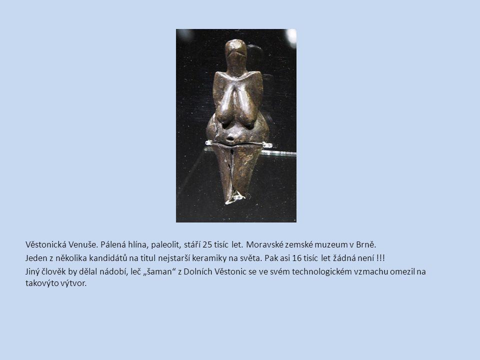 Věstonická Venuše. Pálená hlína, paleolit, stáří 25 tisíc let. Moravské zemské muzeum v Brně. Jeden z několika kandidátů na titul nejstarší keramiky n