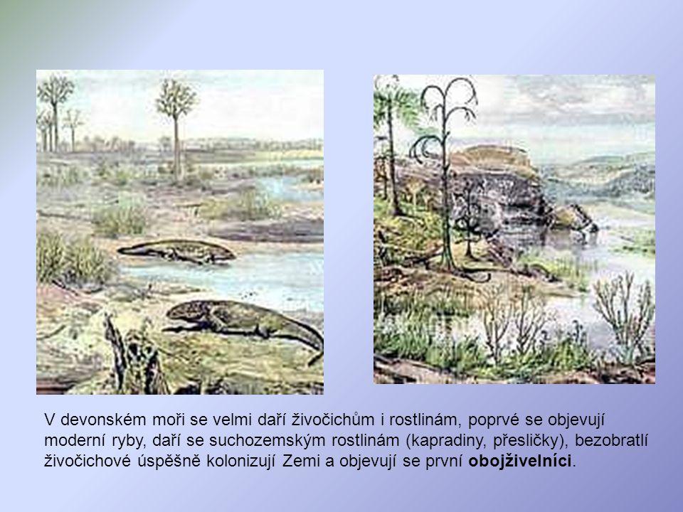 V devonském moři se velmi daří živočichům i rostlinám, poprvé se objevují moderní ryby, daří se suchozemským rostlinám (kapradiny, přesličky), bezobra