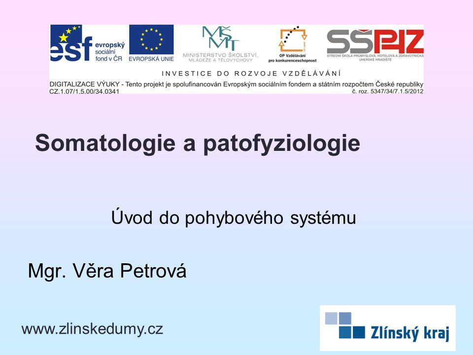 Úvod do pohybového systému Mgr. Věra Petrová Somatologie a patofyziologie www.zlinskedumy.cz