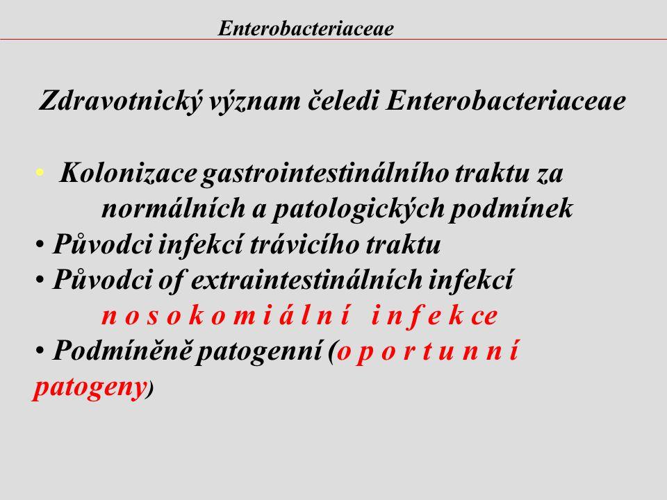 Enterobacteriaceae Historie jména Klebsiella pneumoniae
