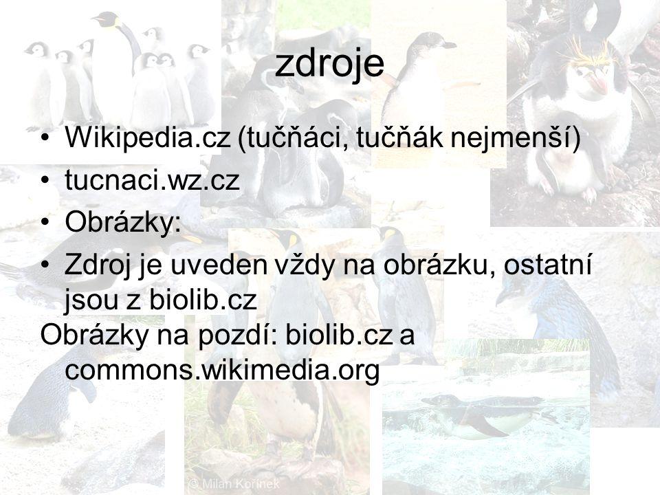 zdroje Wikipedia.cz (tučňáci, tučňák nejmenší) tucnaci.wz.cz Obrázky: Zdroj je uveden vždy na obrázku, ostatní jsou z biolib.cz Obrázky na pozdí: biol