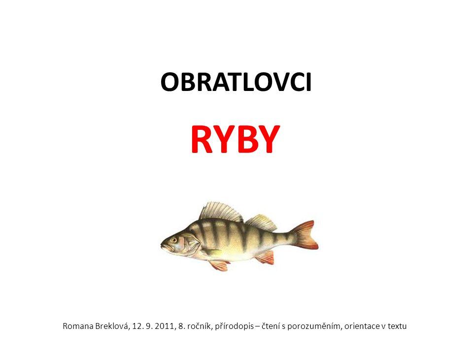 OBRATLOVCI RYBY Romana Breklová, 12. 9. 2011, 8.