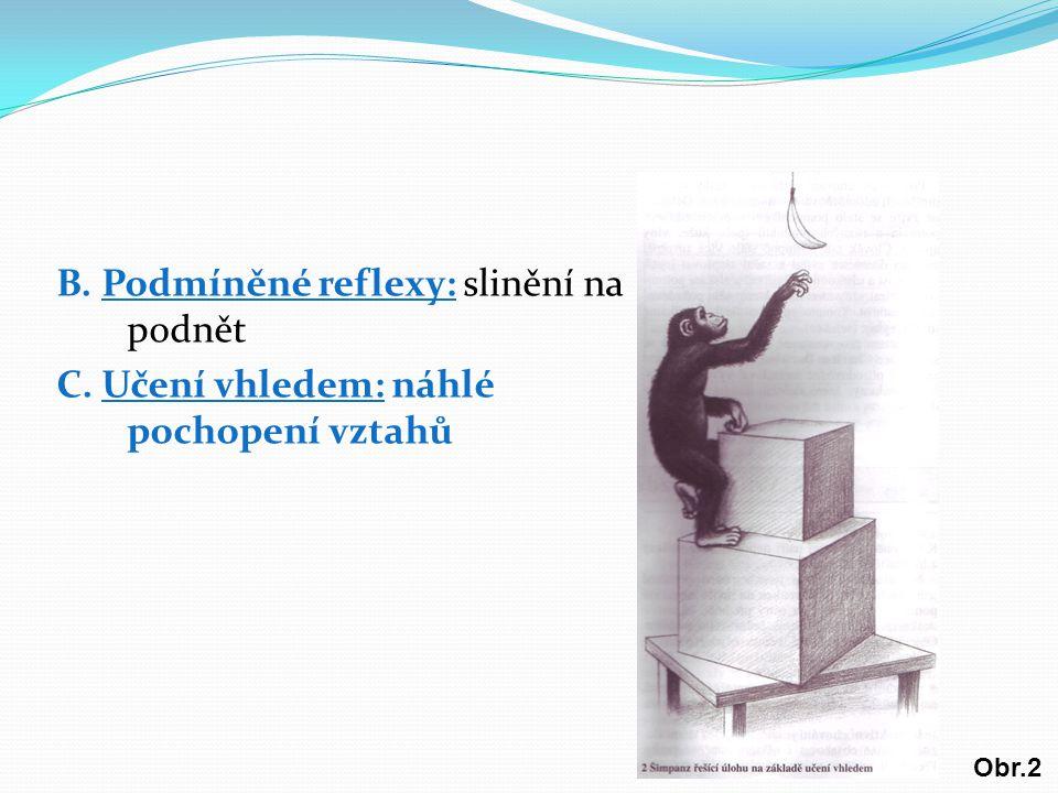 B. Podmíněné reflexy: slinění na podnět C. Učení vhledem: náhlé pochopení vztahů Obr.2