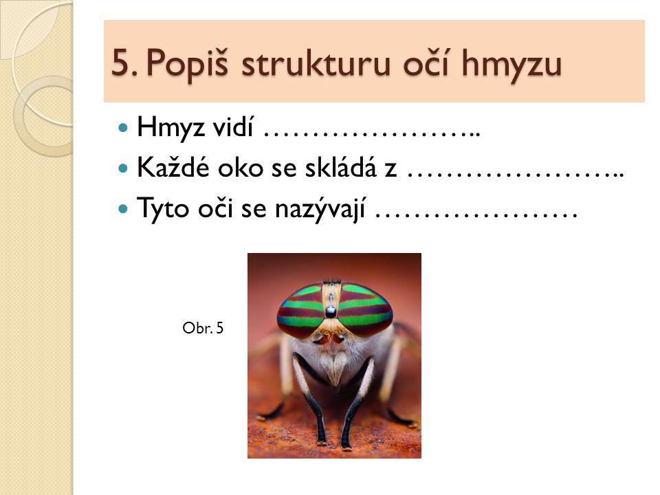 6.Pavoukovci – doplň text Tělo je složeno z …………………… a………………….