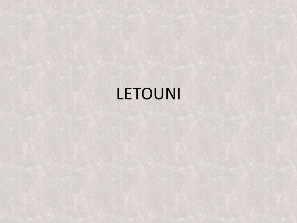 LETOUNI