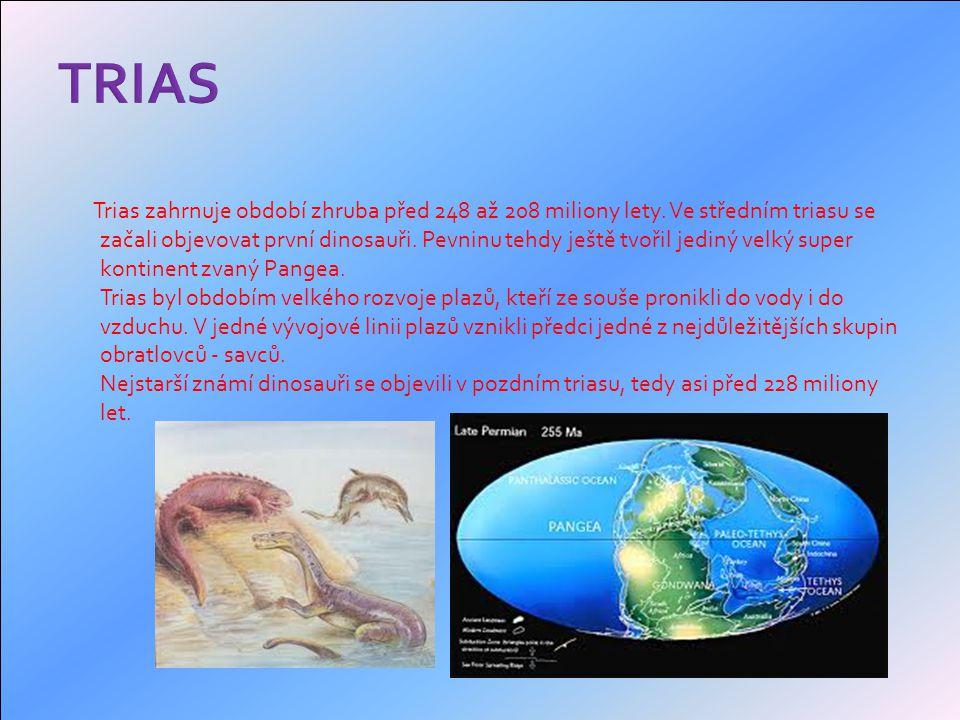 Trias zahrnuje období zhruba před 248 až 208 miliony lety.