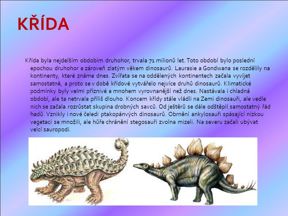 Křída byla nejdelším obdobím druhohor, trvala 71 milionů let.