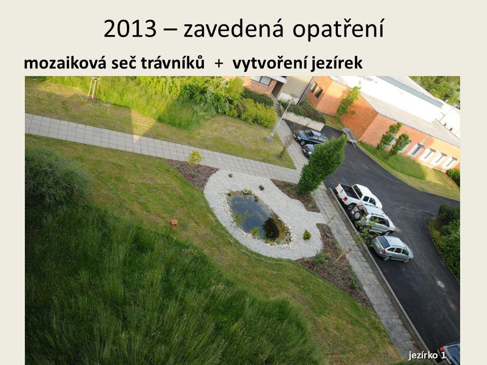 2013 – zavedená opatření mozaiková seč trávníků + vytvoření jezírek jezírko 1