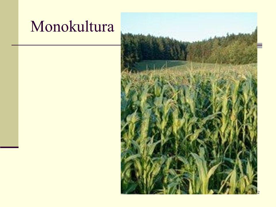 32 Monokultura
