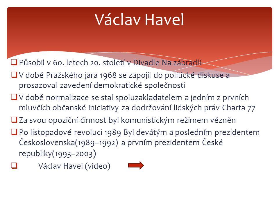  Působil v 60. letech 20. století v Divadle Na zábradlí  V době Pražského jara 1968 se zapojil do politické diskuse a prosazoval zavedení demokratic