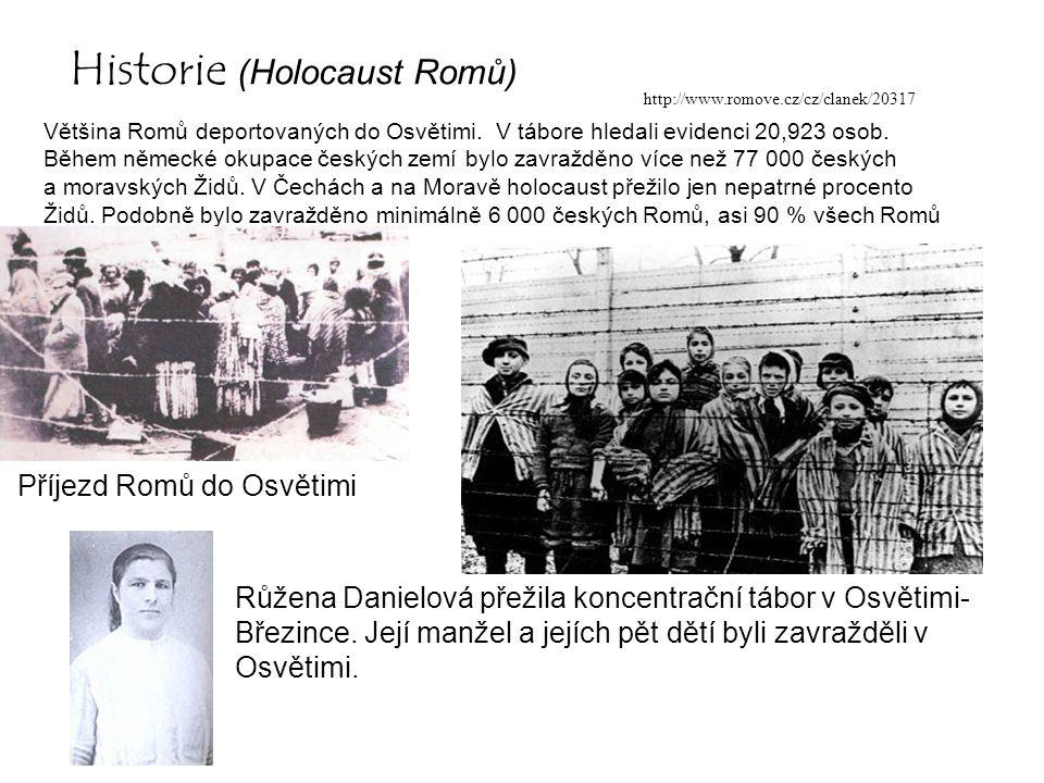 Historie (Holocaust Romů) Většina Romů deportovaných do Osvětimi. V tábore hledali evidenci 20,923 osob. Během německé okupace českých zemí bylo zavra