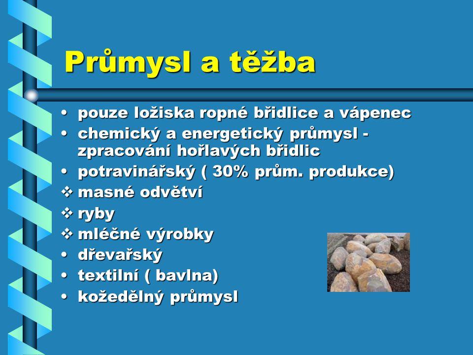 Zajímavosti VÝZNAMNÉ DNY 1.leden - Nový rok1. leden - Nový rok 24.