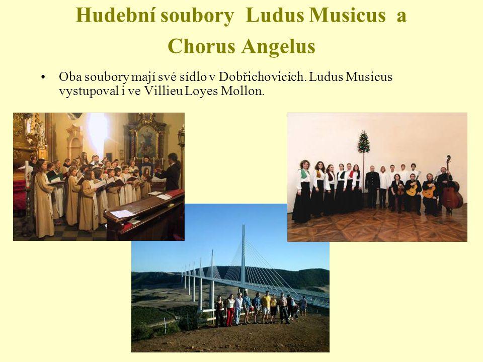 Hudební soubory Ludus Musicus a Chorus Angelus Oba soubory mají své sídlo v Dobřichovicích.