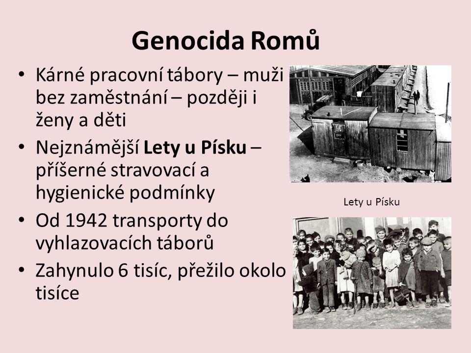 Genocida Romů Kárné pracovní tábory – muži bez zaměstnání – později i ženy a děti Nejznámější Lety u Písku – příšerné stravovací a hygienické podmínky Od 1942 transporty do vyhlazovacích táborů Zahynulo 6 tisíc, přežilo okolo tisíce Lety u Písku