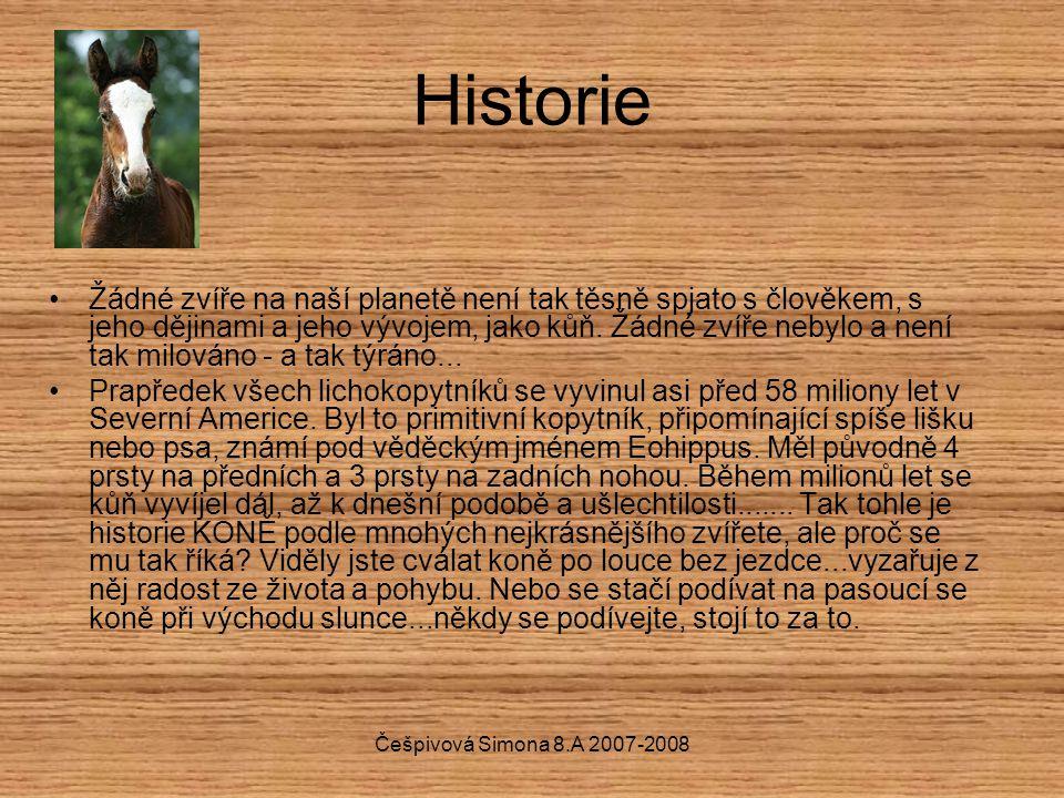 Historie Žádné zvíře na naší planetě není tak těsně spjato s člověkem, s jeho dějinami a jeho vývojem, jako kůň. Žádné zvíře nebylo a není tak milován