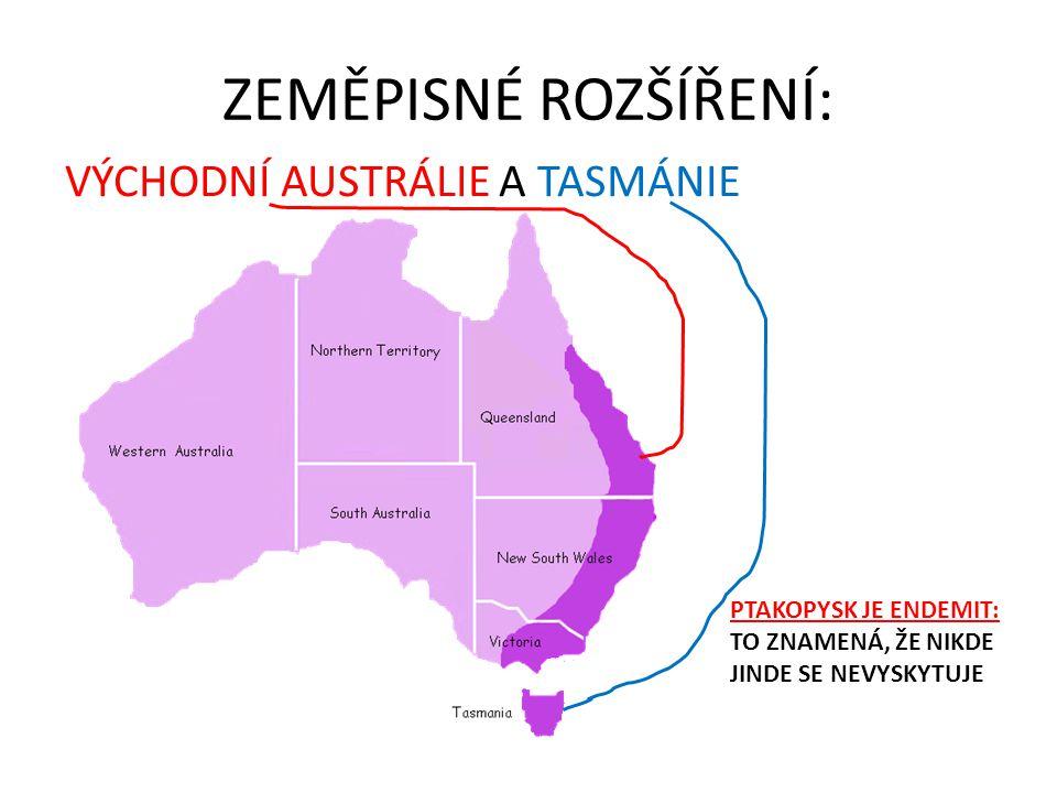 ZEMĚPISNÉ ROZŠÍŘENÍ: VÝCHODNÍ AUSTRÁLIE A TASMÁNIE PTAKOPYSK JE ENDEMIT: TO ZNAMENÁ, ŽE NIKDE JINDE SE NEVYSKYTUJE