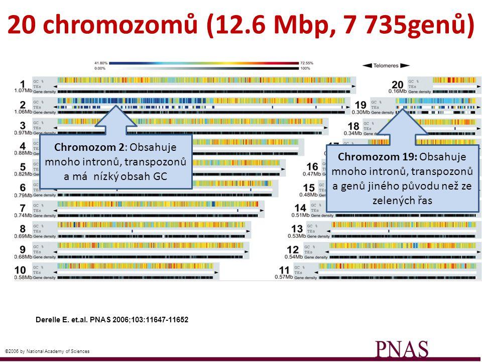 Derelle E. et.al. PNAS 2006;103:11647-11652 ©2006 by National Academy of Sciences 20 chromozomů (12.6 Mbp, 7 735genů) Chromozom 2: Obsahuje mnoho intr