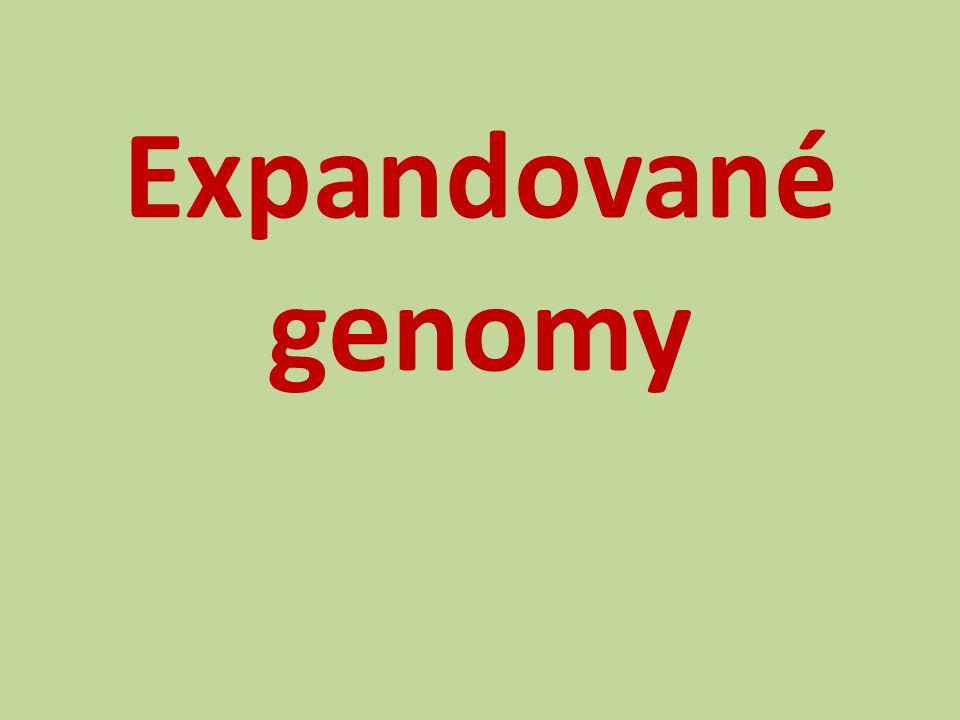 Expandované genomy
