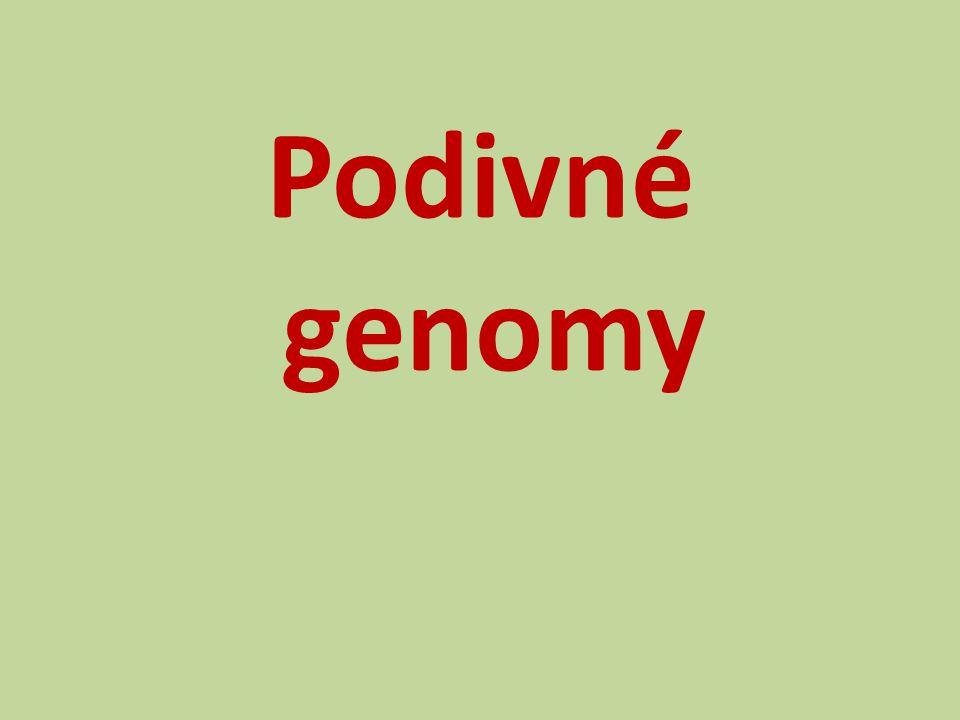 Podivné genomy