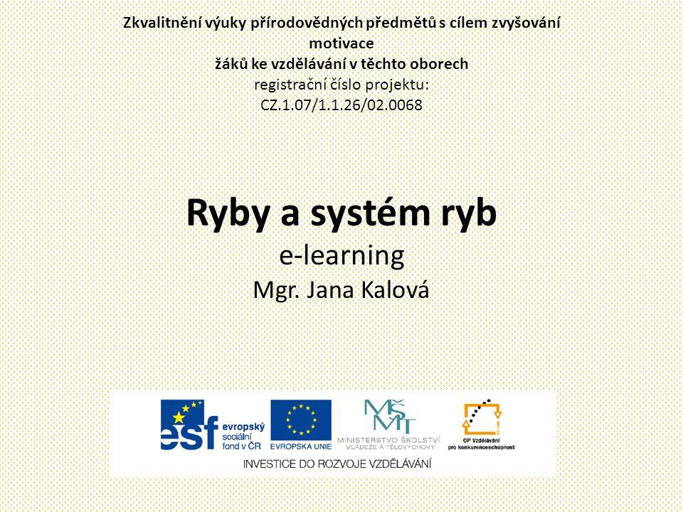 Ryby a systém ryb e-learning Mgr. Jana Kalová Zkvalitnění výuky přírodovědných předmětů s cílem zvyšování motivace žáků ke vzdělávání v těchto oborech