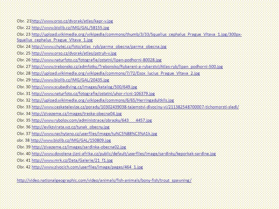 Obr. 21http://www.orso.cz/dvorak/atlas/kapr-v.jpghttp://www.orso.cz/dvorak/atlas/kapr-v.jpg Obr. 22 http://www.biolib.cz/IMG/GAL/58155.jpghttp://www.b