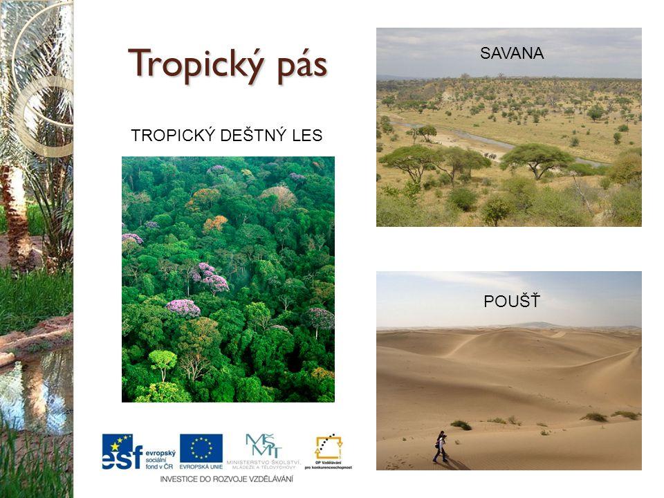 Poušť Pouště se nacházejí na severních a jižních okrajích tropického pásu.