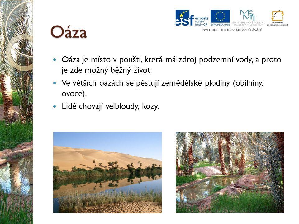 Oáza Oáza je místo v poušti, která má zdroj podzemní vody, a proto je zde možný běžný život. Ve větších oázách se pěstují zemědělské plodiny (obilniny