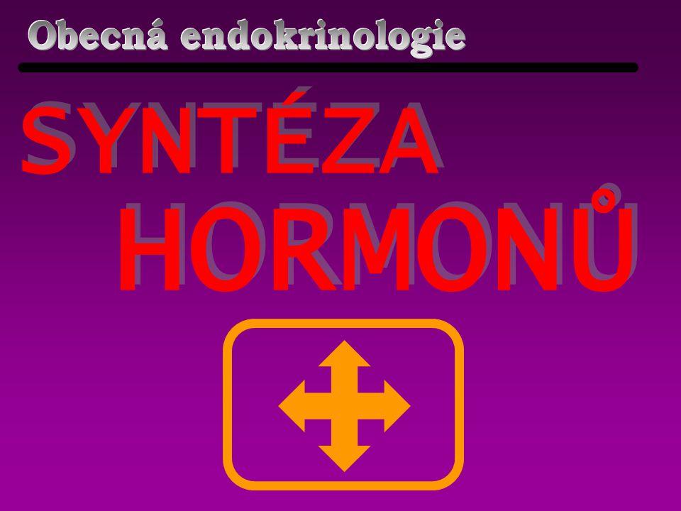místo syntézy v buňce syntéza do zásoby Peptidické hormony DRSNÉ ENDOPLAZMATICKÉ RETIKULUM ANO Steroidní hormony HLADKÉ ENDOPLAZMATICKÉ RETIKULUM NE Aminoacidoderiváty CYTOPLAZMA ANO