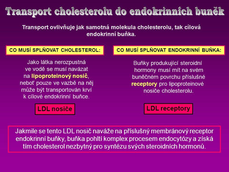 Transport ovlivňuje jak samotná molekula cholesterolu, tak cílová endokrinní buňka. CO MUSÍ SPLŇOVAT CHOLESTEROL:CO MUSÍ SPLŇOVAT ENDOKRINNÍ BUŇKA: Ja