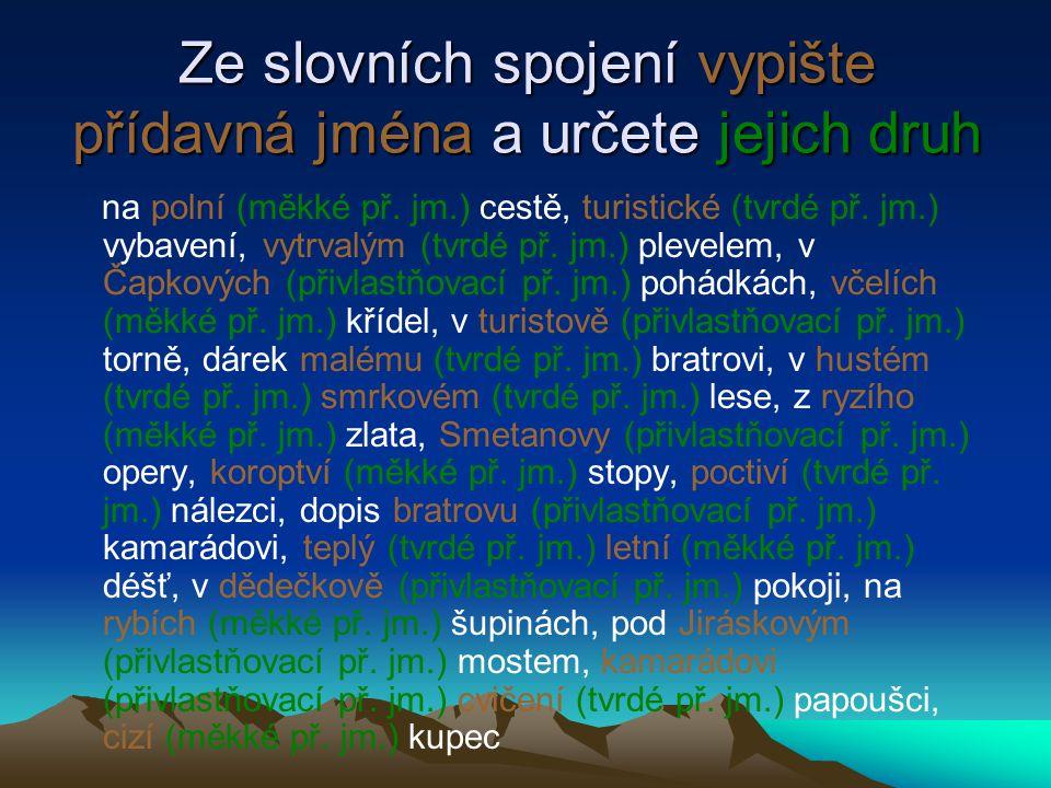Ze slovních spojení vypište přídavná jména a určete jejich druh na polní (měkké př. jm.) cestě, turistické (tvrdé př. jm.) vybavení, vytrvalým (tvrdé