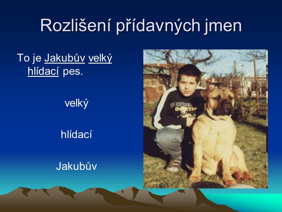 Rozlišení přídavných jmen To je Jakubův velký hlídací pes. velký hlídací Jakubův