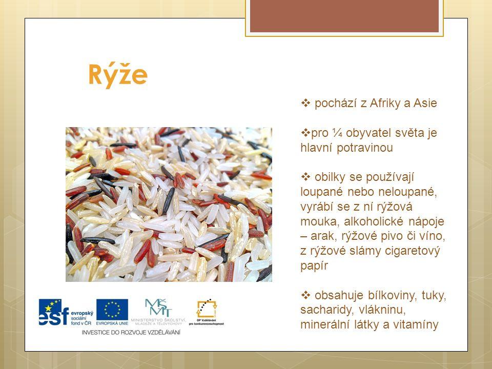 Rýže (  pochází z Afriky a Asie  pro ¼ obyvatel světa je hlavní potravinou  obilky se používají loupané nebo neloupané, vyrábí se z ní rýžová mouka