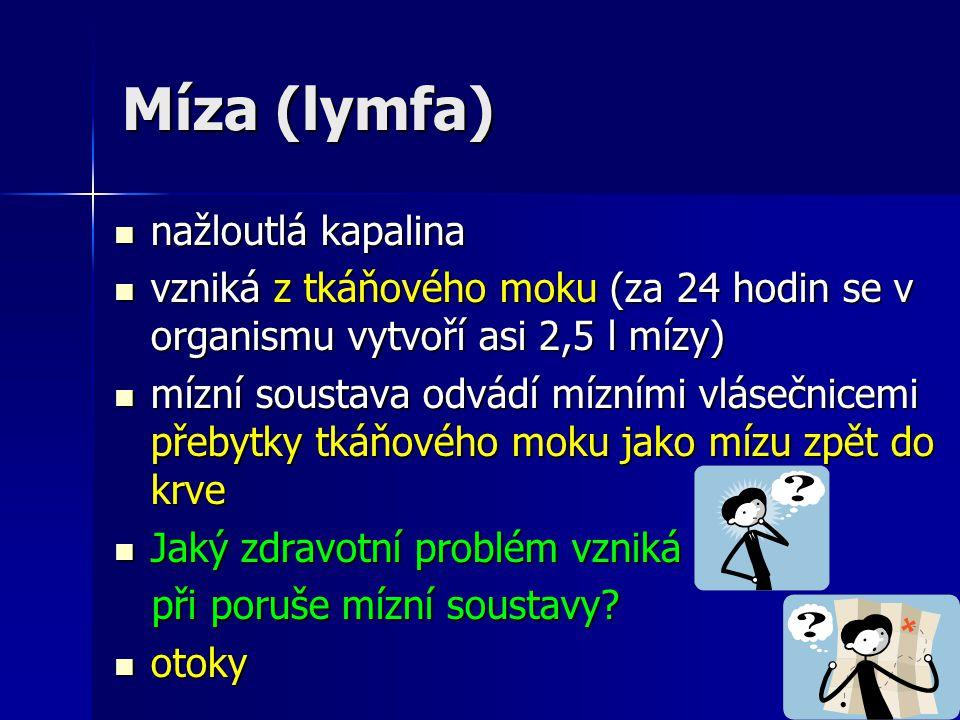 Míza (lymfa) nažloutlá kapalina nažloutlá kapalina vzniká z tkáňového moku (za 24 hodin se v organismu vytvoří asi 2,5 l mízy) vzniká z tkáňového moku