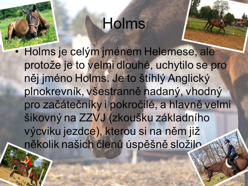 Holms Holms je celým jménem Helemese, ale protože je to velmi dlouhé, uchytilo se pro něj jméno Holms. Je to štíhlý Anglický plnokrevník, všestranně n