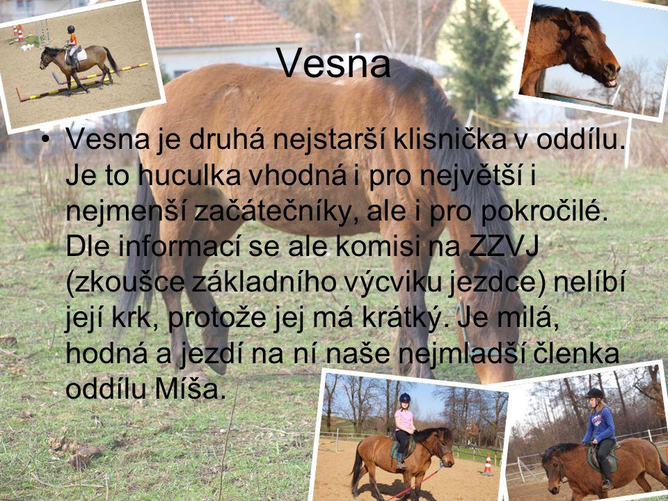 Vesna Vesna je druhá nejstarší klisnička v oddílu. Je to huculka vhodná i pro největší i nejmenší začátečníky, ale i pro pokročilé. Dle informací se a