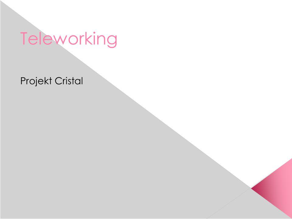 Teleworking Projekt Cristal